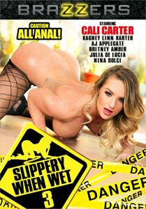 Slippery When Wet #3 – Brazzers